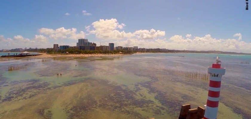 1 Plano Nacional para a defesa dos corais em Alagoas