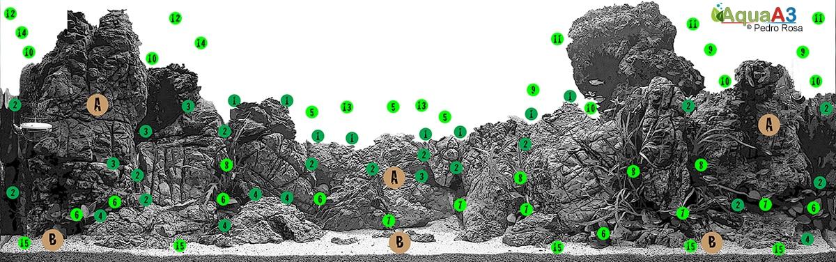 Evolução Forsaken World de Pedro Rosa flora