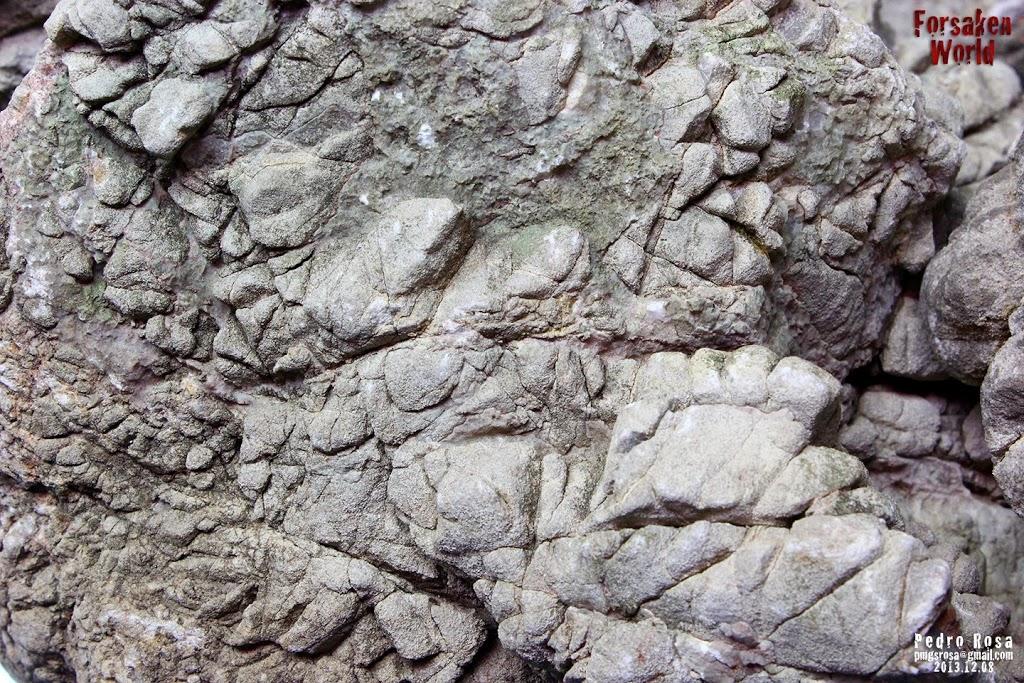 Evolução Forsaken World de Pedro Rosa textura das pedras