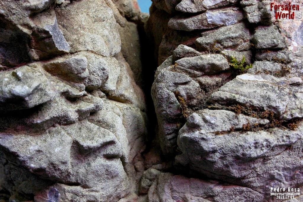 Evolução Forsaken World de Pedro Rosa textura das pedras 2