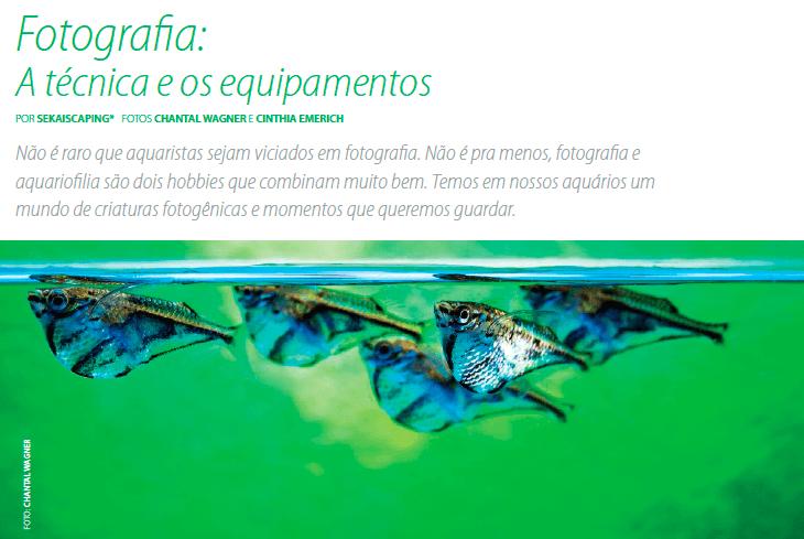 Fotografia A técnica e os equipamentos  Aquamagazine 12