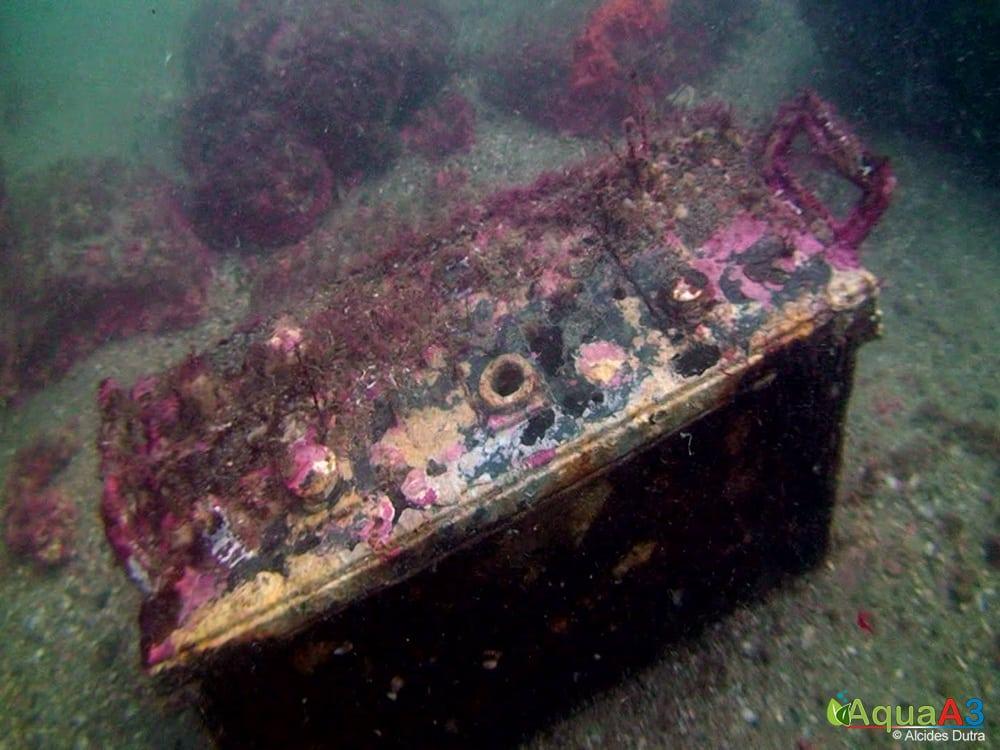 Os verdadeiros monstros do mar - lixo no mar