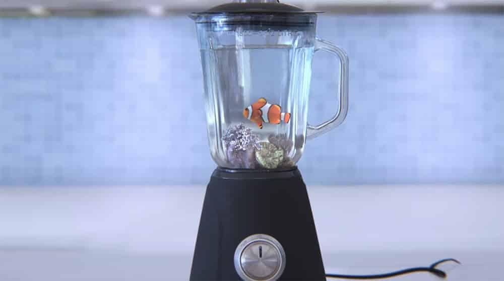 peixe palhaço no liquidificador greenpeace video