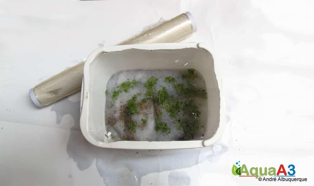 Cultivo emerso com pode de sorvete Filme de pvc