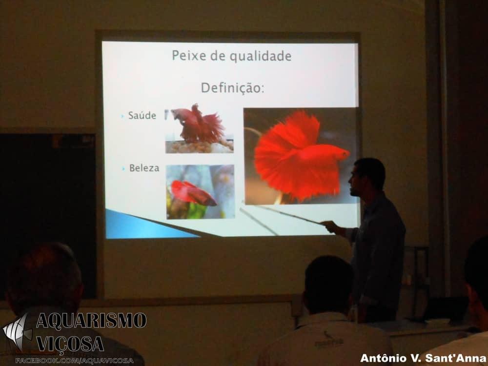 Minas Gerais: II Encontro de Aquarismo em Viçosa