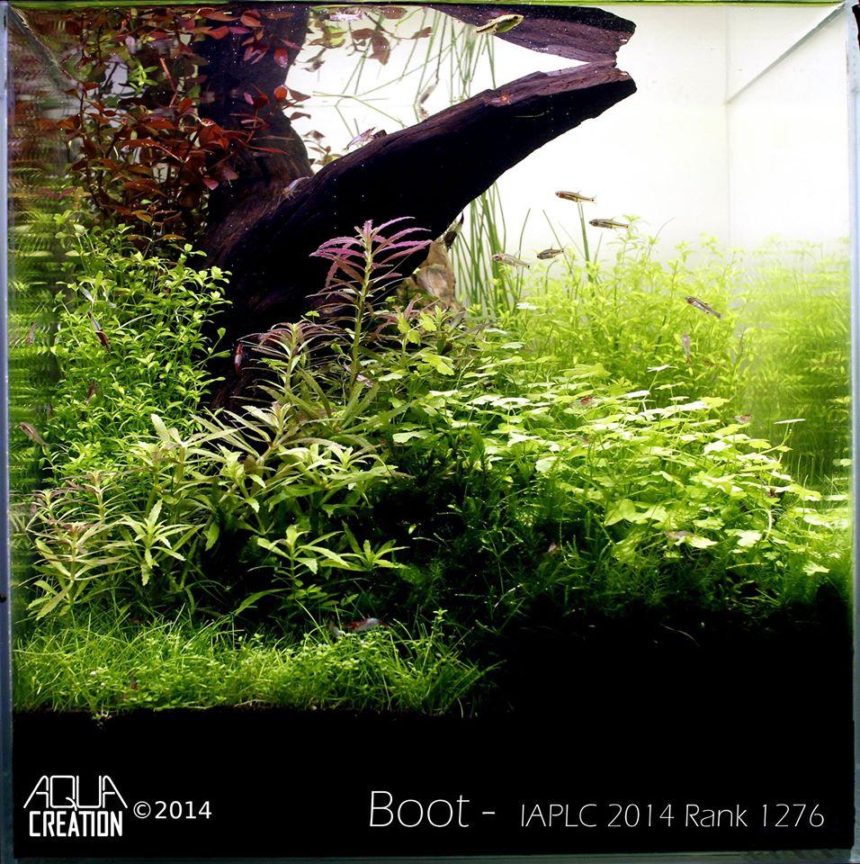 Rank 1276º Mats Hauge -IAPLC 2014