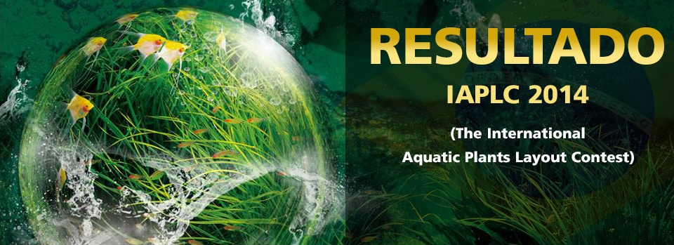 Resultado IAPLC 2014 (The International Aquatic Plants Layout Contest)