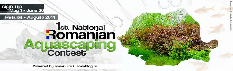 Resultado Romanian Aquascaping Contest 2014