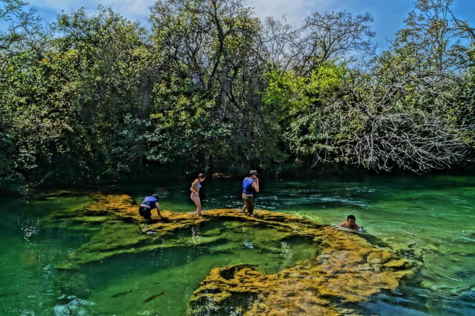 ÁGUAS BRASILEIRAS conservação gestão e sustentabilidade