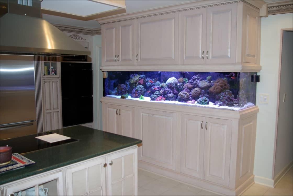 aquarium kitchen - bpaquarium (aquario na cozinha)
