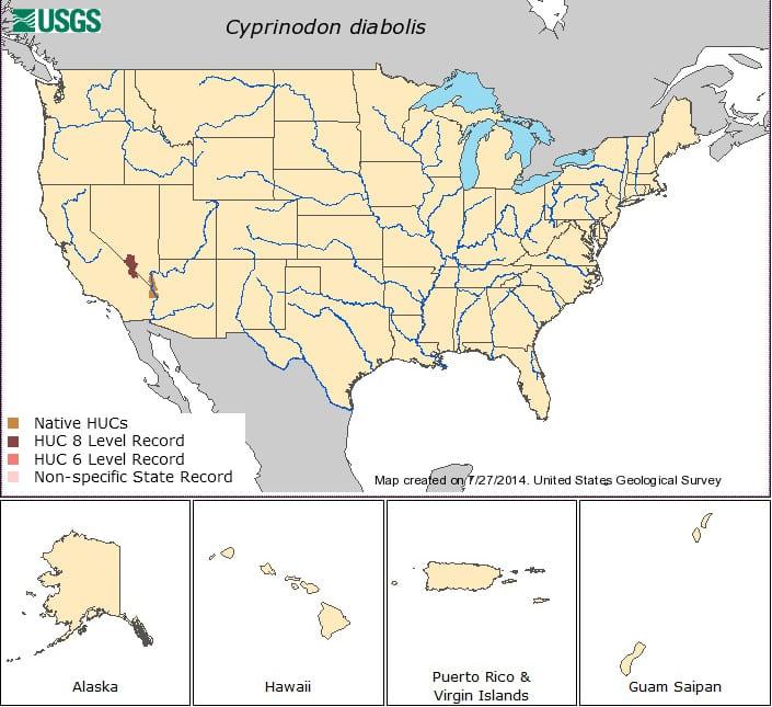 localidade do Cyprinodon Diabolis