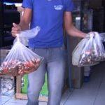 loja goiania • Goiânia: Peixes morrem devido à falta de energia em loja.