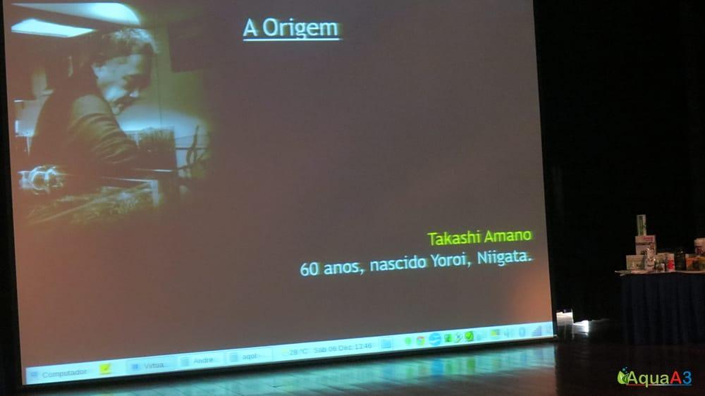 Encontro Brasileiro de Aquarismo (EBA) Aquapaisagismo a origem