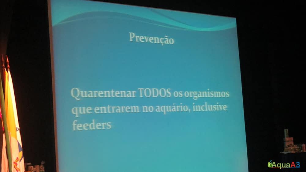 Encontro Brasileiro de Aquarismo (EBA) palestra Renato Moterani sobre Quarentena
