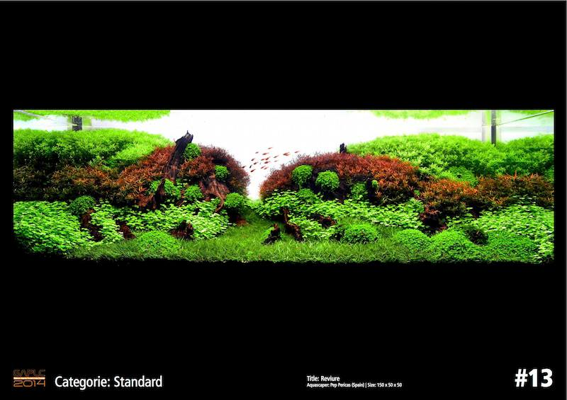 Rank 13 German Aquatic Plants Layout Contest - GAPLC 2014