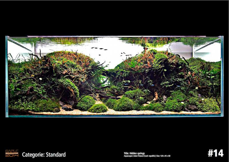 Rank 14 German Aquatic Plants Layout Contest  - GAPLC 2014