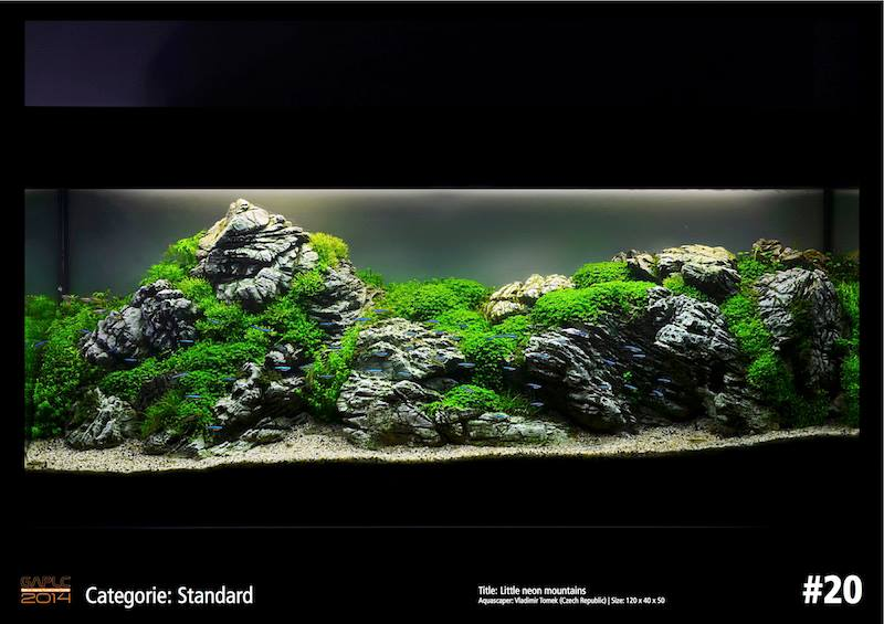 Rank 20 German Aquatic Plants Layout Contest  - GAPLC 2014