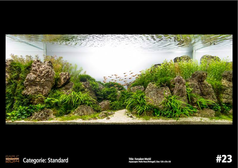 Rank 23 German Aquatic Plants Layout Contest  - GAPLC 2014