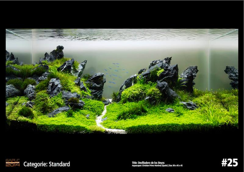 Rank 25 German Aquatic Plants Layout Contest - GAPLC 2014