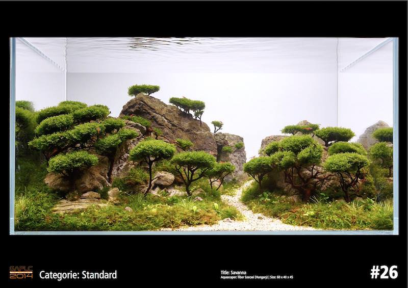 Rank 26 German Aquatic Plants Layout Contest  - GAPLC 2014