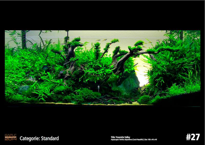 Rank 27 German Aquatic Plants Layout Contest  - GAPLC 2014