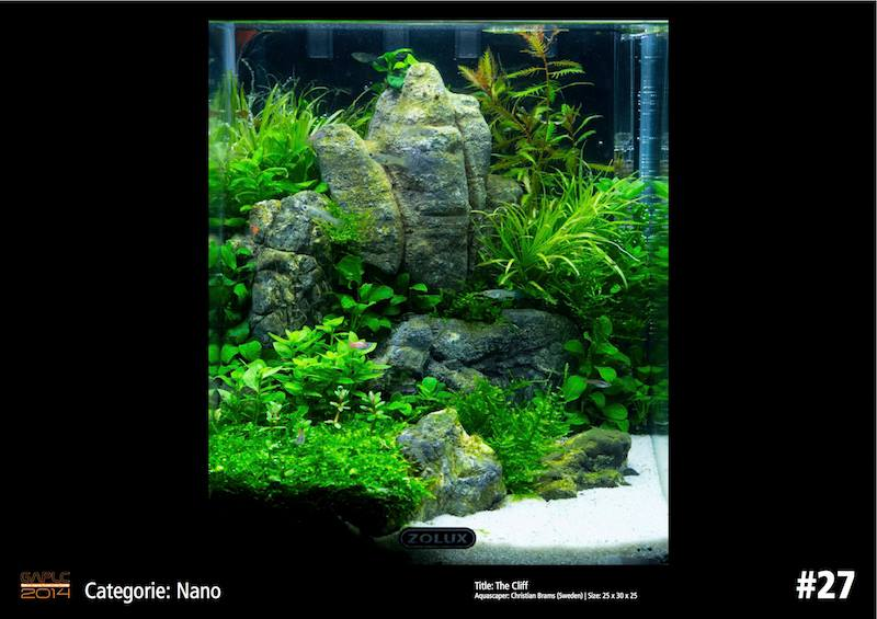 Rank 27 Nano - German Aquatic Plants Layout Contest - GAPLC 2014
