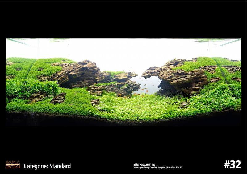 Rank 32 German Aquatic Plants Layout Contest - GAPLC 2014