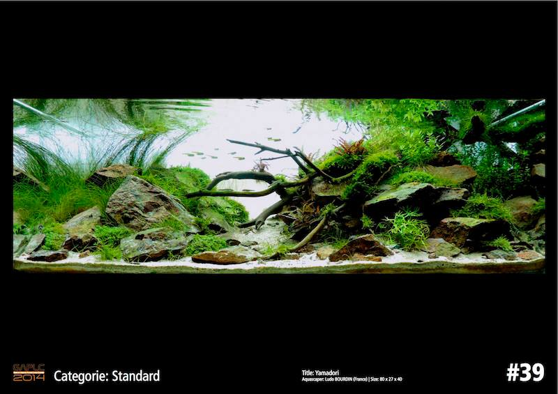 Rank 39 German Aquatic Plants Layout Contest  - GAPLC 2014
