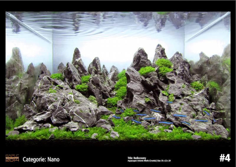 Rank 4 Nano - German Aquatic Plants Layout Contest  - GAPLC 2014