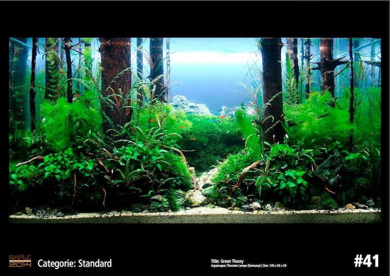 Rank 41 German Aquatic Plants Layout Contest  - GAPLC 2014