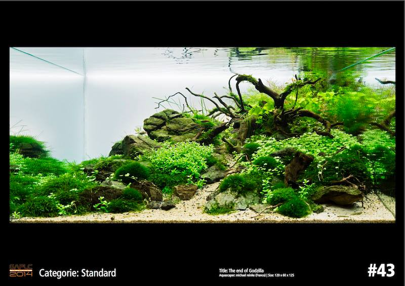 Rank 43 German Aquatic Plants Layout Contest  - GAPLC 2014