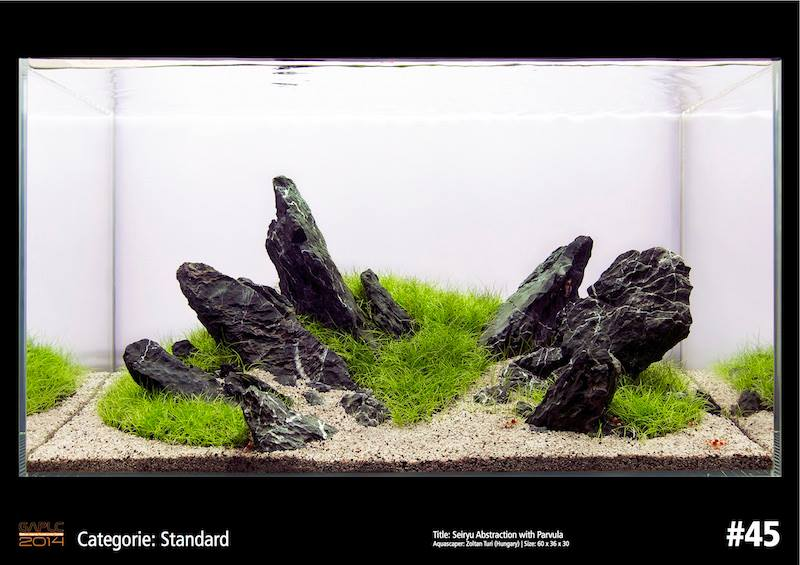 Rank 45 German Aquatic Plants Layout Contest  - GAPLC 2014