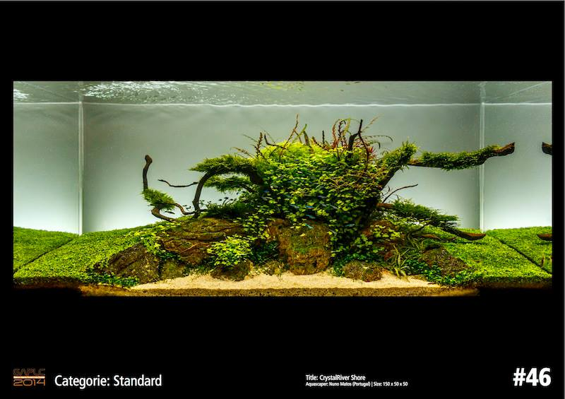 Rank 46 German Aquatic Plants Layout Contest  - GAPLC 2014