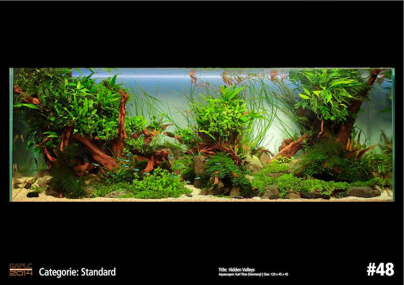 Rank 48 German Aquatic Plants Layout Contest  - GAPLC 2014