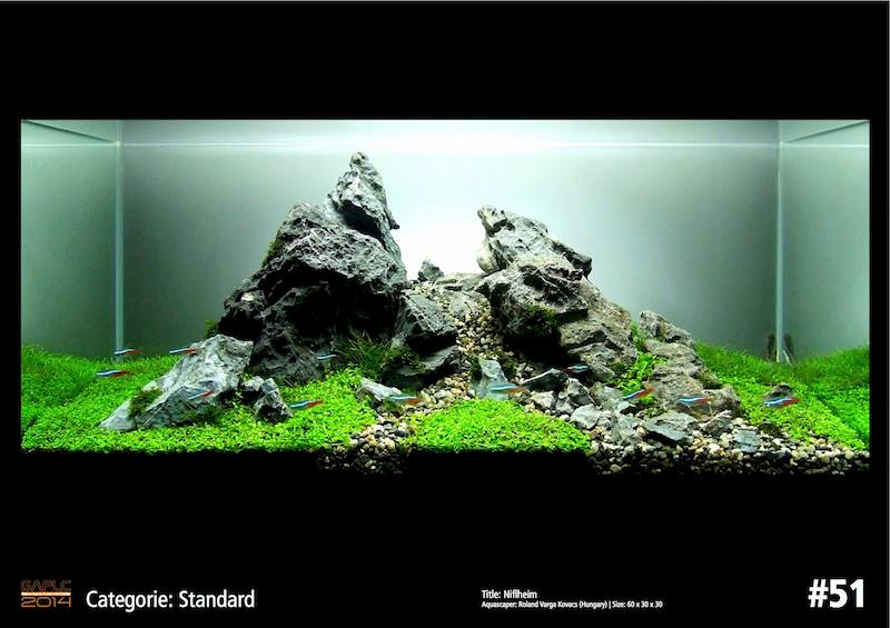 Rank 51 German Aquatic Plants Layout Contest  - GAPLC 2014