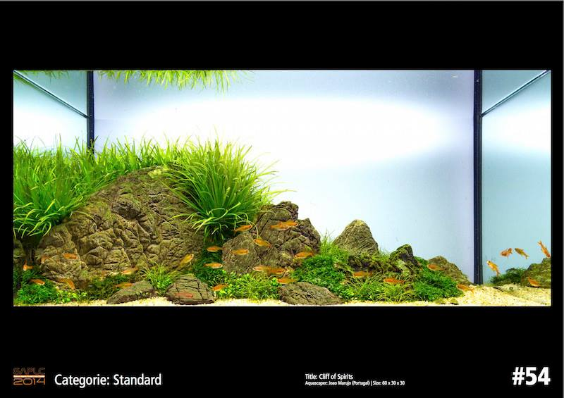 Rank 54 German Aquatic Plants Layout Contest  - GAPLC 2014