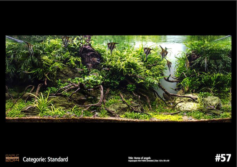 Rank 57 German Aquatic Plants Layout Contest - GAPLC 2014