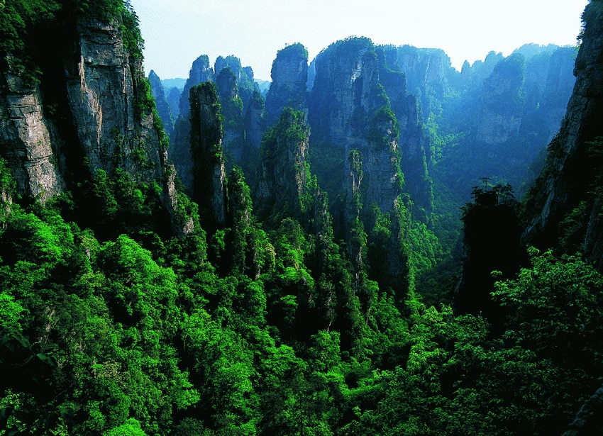 zhangjiajie national forest park - 47º IAPLC 2014