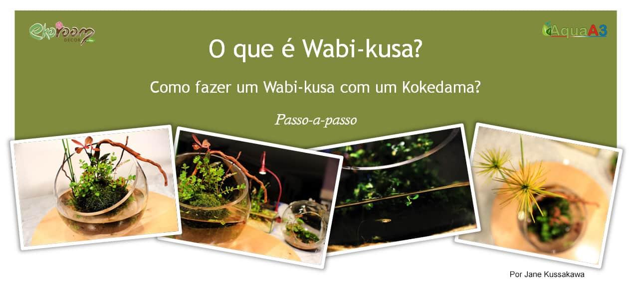 O que é Wabi kusa - Passo a passo