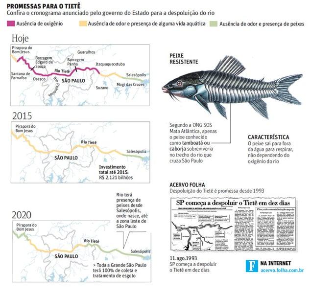 Rio Tietê terá vida aquática em 2015, diz governo