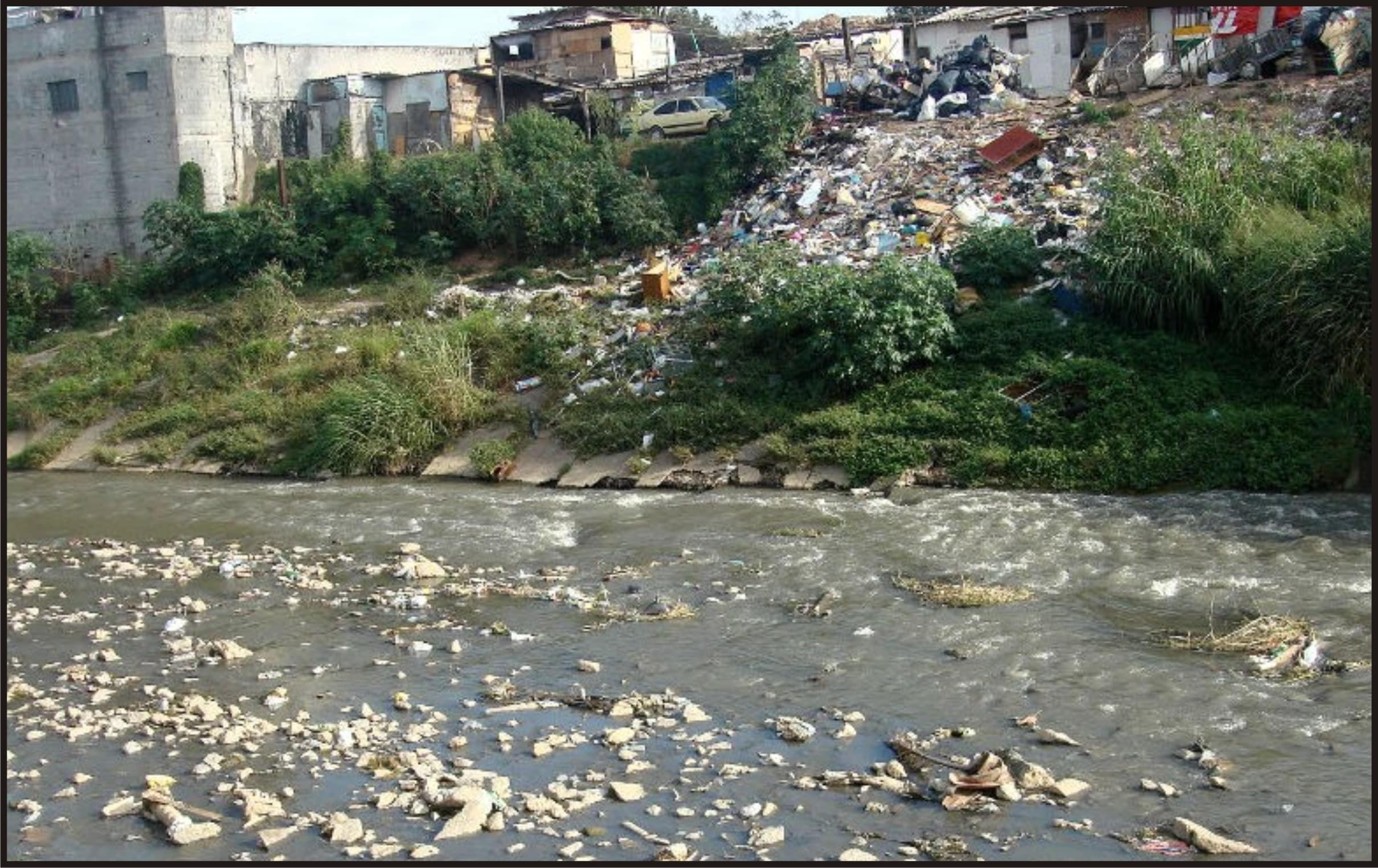 Rio Tietê terá vida aquática em 2015, diz governo sobre despoluição