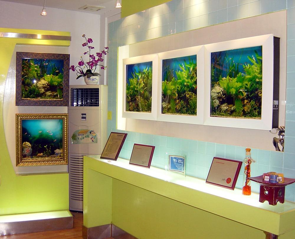 Aquavista - Seu aquário na parede