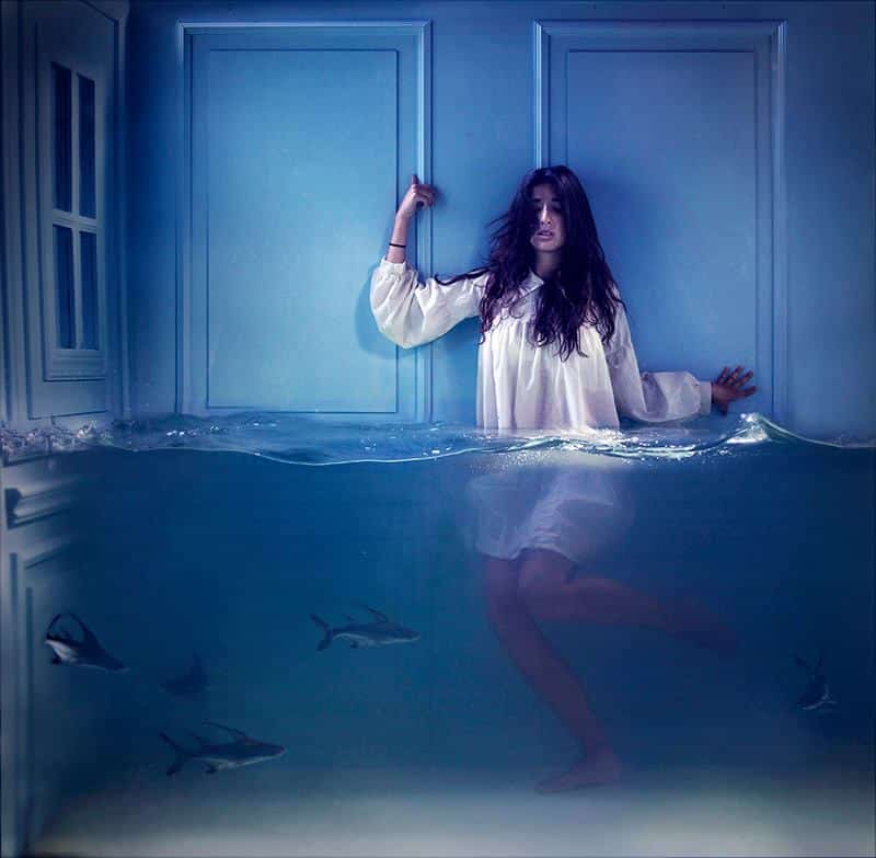 Peixe no aquário com humano