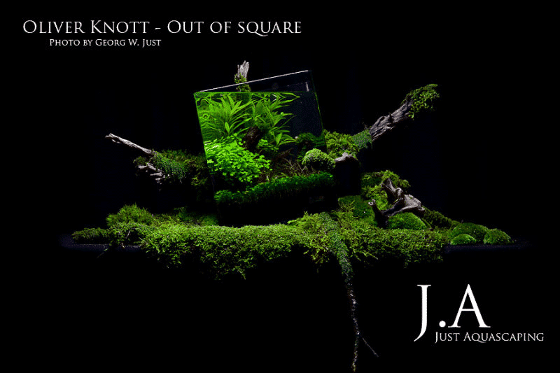 Oliver Knott - Out of Square