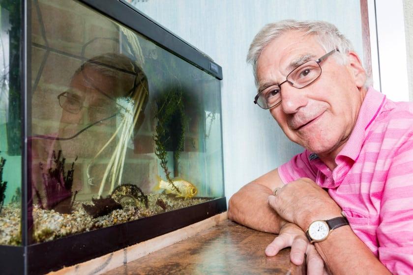 Peixinho Splash comemora 38 anos