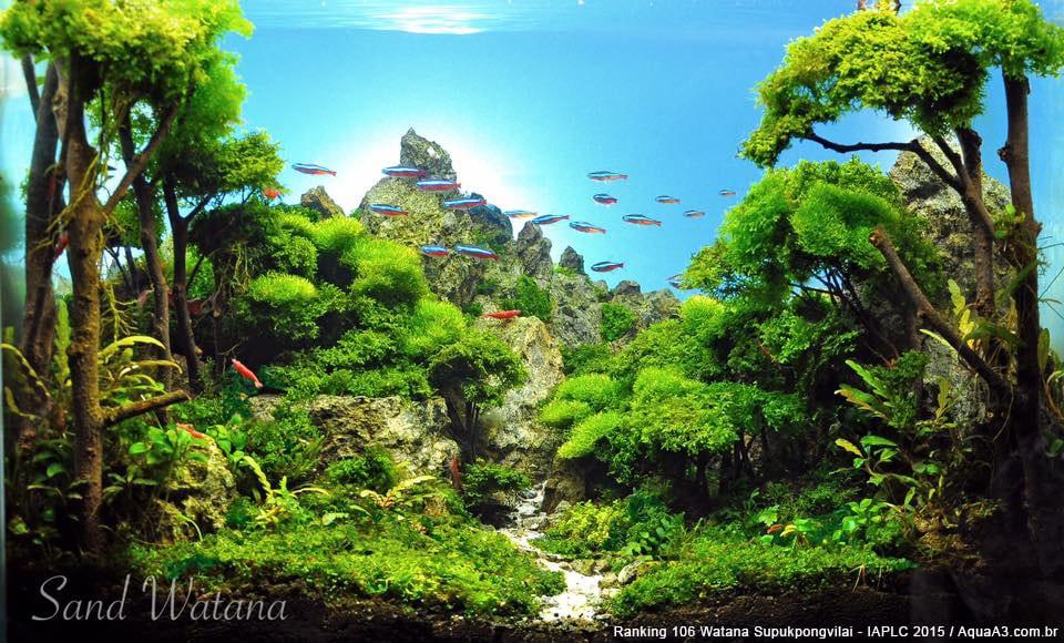 Ranking 106 Watana Supukpongvilai - IAPLC 2015