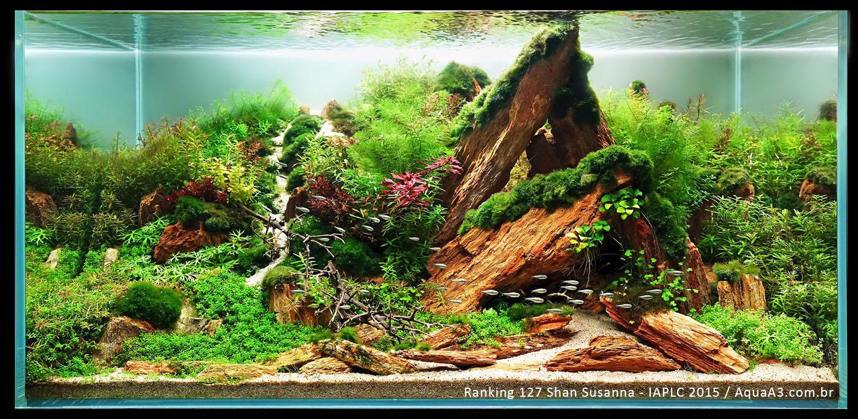 Ranking 127 Shan Susanna - IAPLC 2015