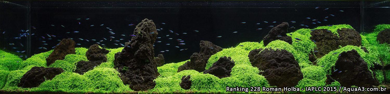 Ranking 228 Roman Holba - IAPLC 2015