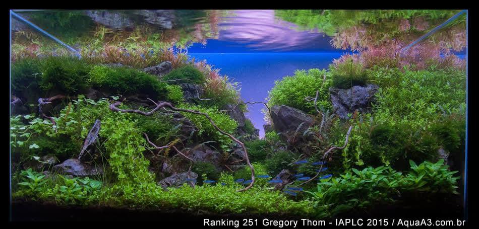 Ranking 251 Gregory Thom - IAPLC 2015