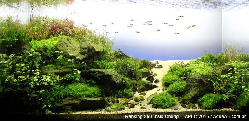 Ranking 263 Insik Chung - IAPLC 2015